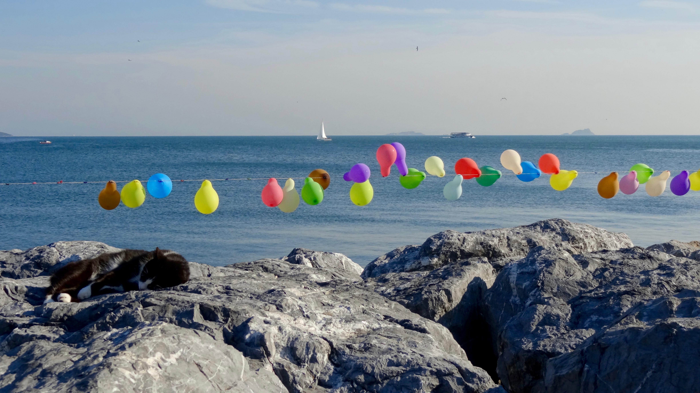 Wasser und Luftballons
